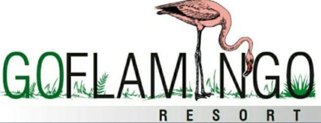 GoFlamingo logo